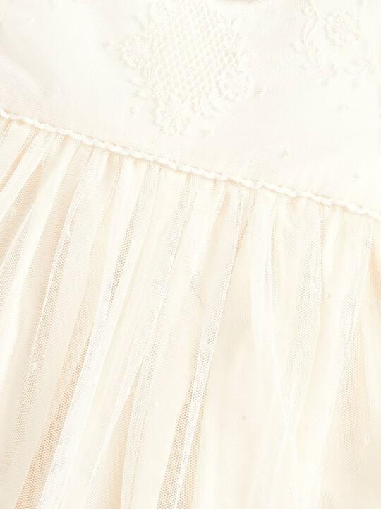 فستان دانتيل كلاسيكي image number 3