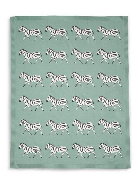 بطانية صغيرة منسوجة - نقشة زيبرا image number 1