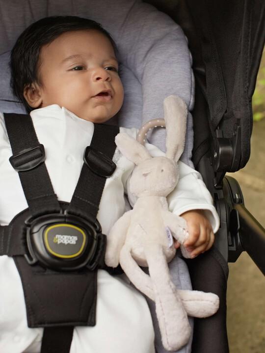 الأرنبة الصغيرة - Millie & Boris image number 3